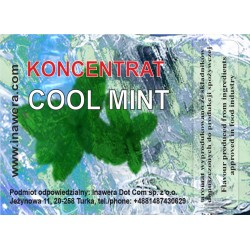 Concentrate Cool Mint