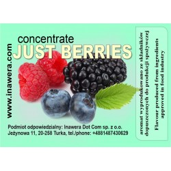 Concentrate Just Berries